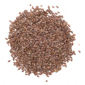 Graines de lin Bio - 100 gr